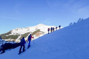Schneeschuhtour für Einsteiger