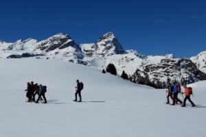 Alp Flix mit dem dominanten Piz Platta im Hintergrund