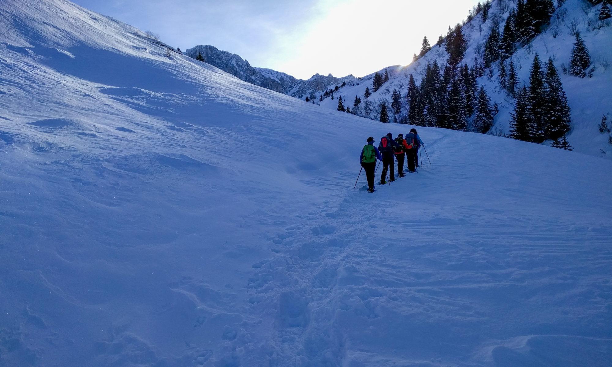 Schneeschuhtour Nollen - Prättigau