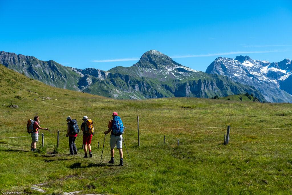 Jeninser Alp
