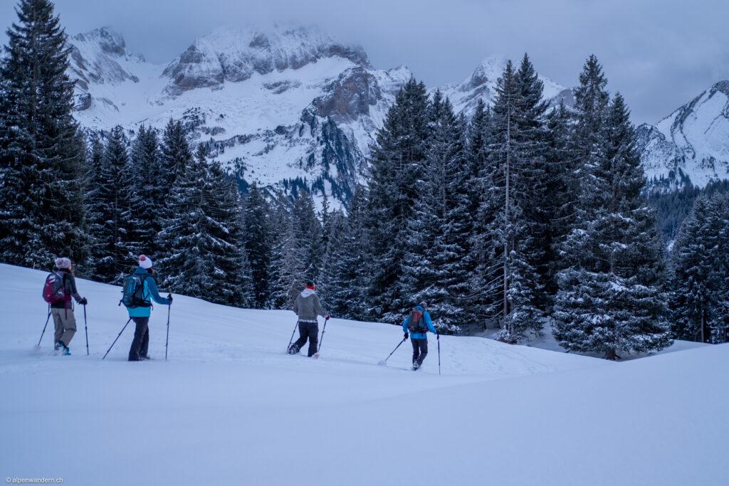 Schneeschuhtour Gamperfin
