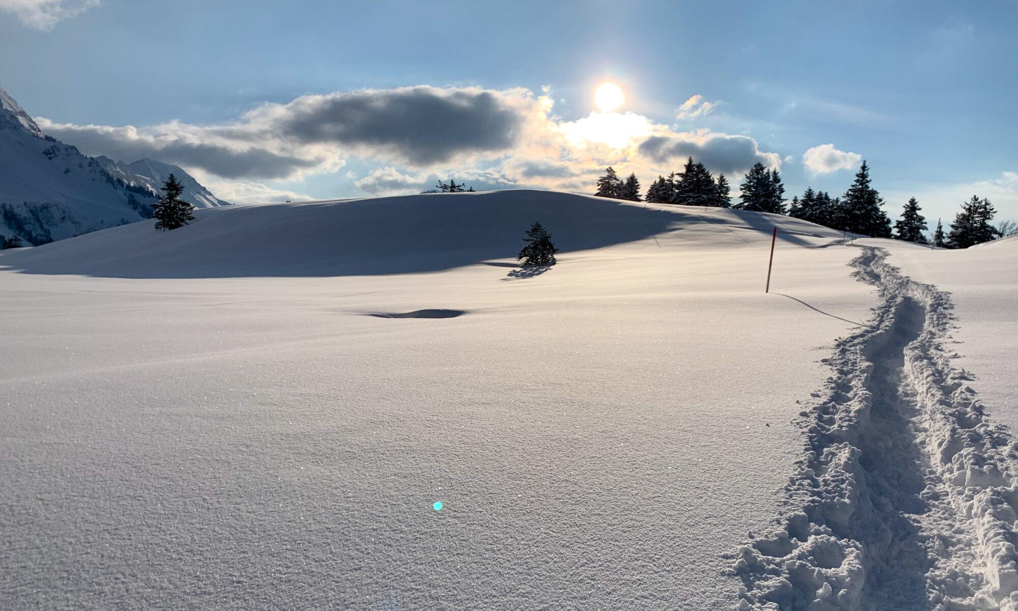 Schneeschuhtour Schwägalp